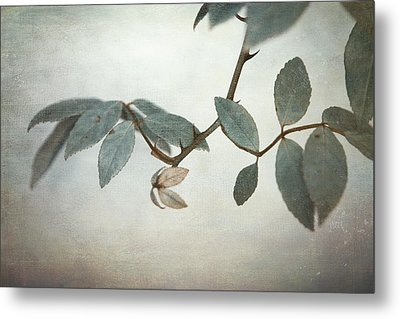 How Delicate This Balance Metal Print by Laurie Search
