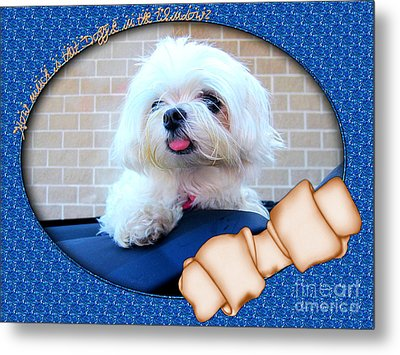 How Much Is That Doggie In The Window Metal Print