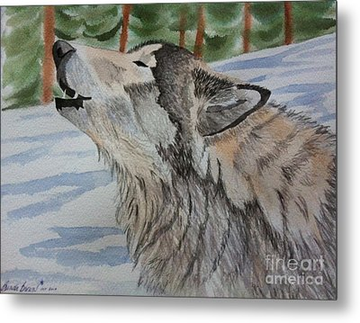 Howling Wolf In Winter Metal Print