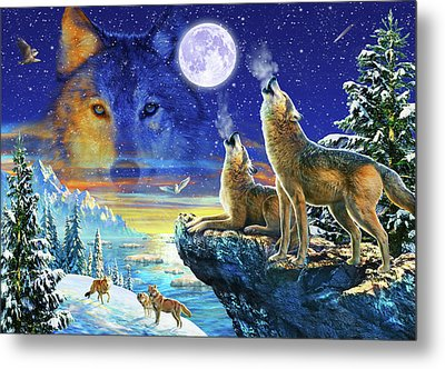 Howling Wolves Metal Print by Adrian Chesterman