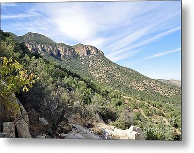 Metal Print featuring the photograph Huachuca Mountains by Gina Savage