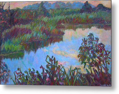 Huckleberry Line Trail Rain Pond Metal Print by Kendall Kessler