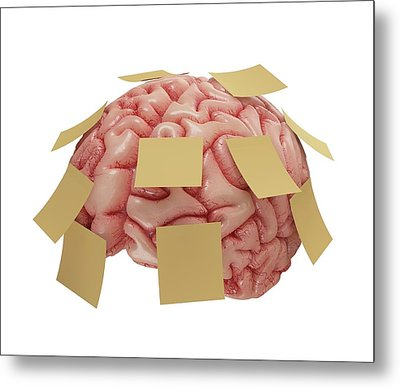 Human Brain With Sticky Notes Metal Print