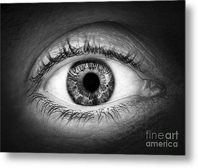 Human Eye Metal Print by Elena Elisseeva