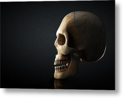 Human Skull Profile On Dark Background Metal Print