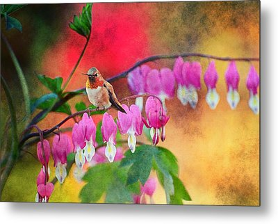 Hummer With Heart Metal Print by Lynn Bauer