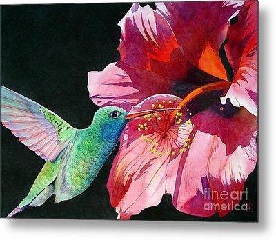 Hummingbird And Hibiscus Metal Print by Robert Hooper