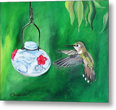 Hummingbird And The Feeder Metal Print by Shelley Overton