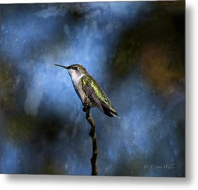Metal Print featuring the digital art Hummingbird Beauty by J Larry Walker