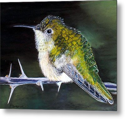Metal Print featuring the painting Hummingbird by Debbie Baker