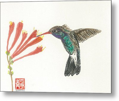 Hummingbird Flight Metal Print by Terri Harris