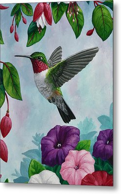 Hummingbird Greeting Card 1 Metal Print by Crista Forest