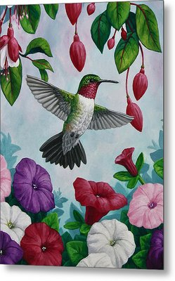 Hummingbird Greeting Card 2 Metal Print by Crista Forest