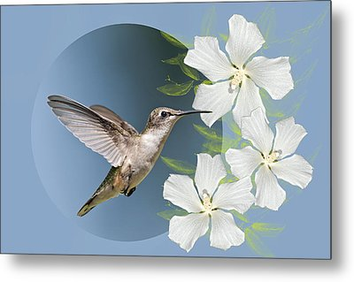 Hummingbird Heaven Metal Print by Bonnie Barry