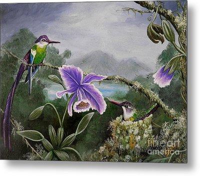 Hummingbird Paradise Metal Print by Amanda Hukill