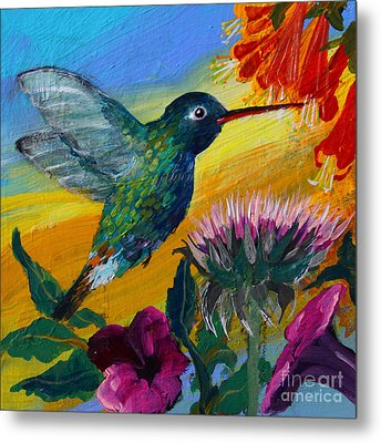 Hummingbird Metal Print
