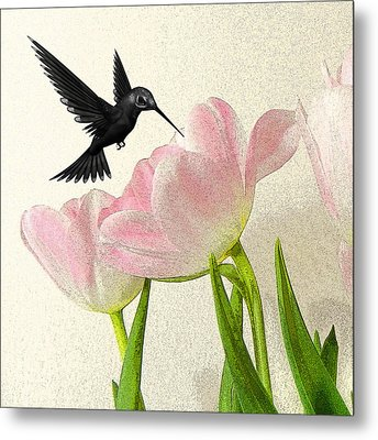 Hummingbird Metal Print by Sharon Lisa Clarke