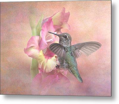 Hummingbirds Gladiola Metal Print