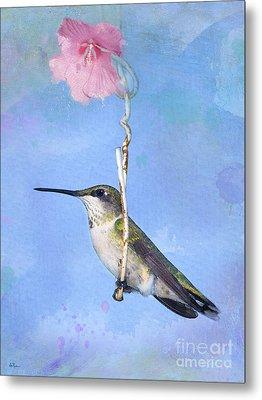 Hummingbirds Like To Swing Metal Print