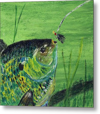 Hungry Bluegill Metal Print