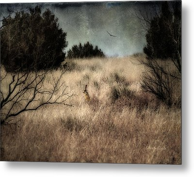 Metal Print featuring the photograph Hunter And The Hunted by Karen Slagle