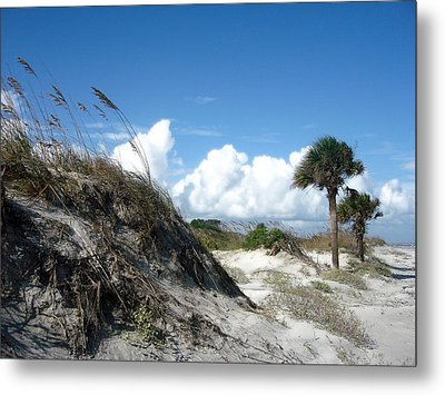 Hunting Island - 9 Metal Print by Ellen Tully
