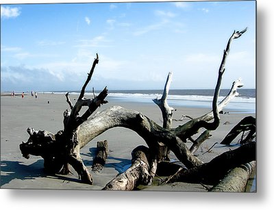 Metal Print featuring the photograph Hunting Island - 2 by Ellen Tully