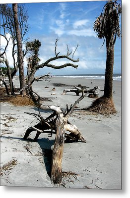 Metal Print featuring the photograph Hunting Island - 3 by Ellen Tully
