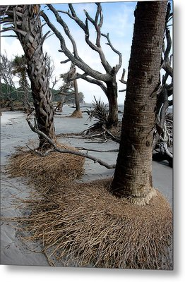 Hunting Island - 4 Metal Print by Ellen Tully