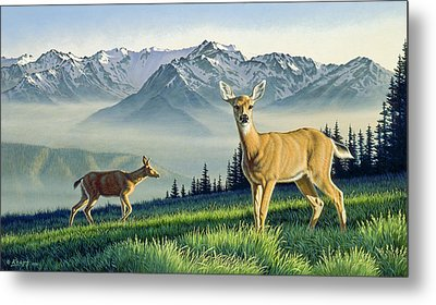 Hurricane Ridge-blacktails Metal Print by Paul Krapf