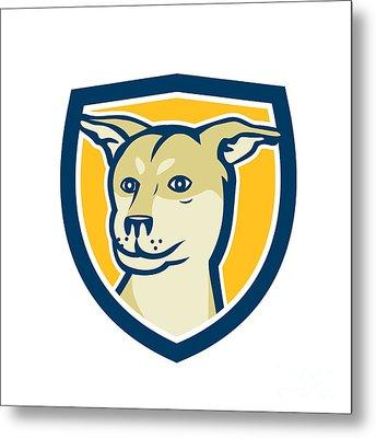Husky Shar Pei Cross Dog Head Shield Cartoon Metal Print by Aloysius Patrimonio