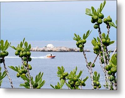 Hydra Island During Springtime Metal Print by George Atsametakis