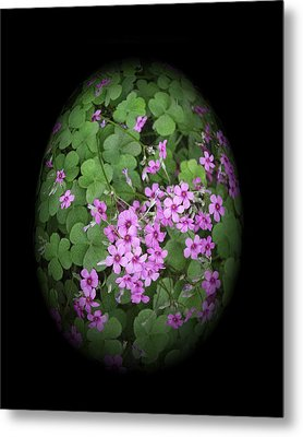 I Am In Clover Metal Print