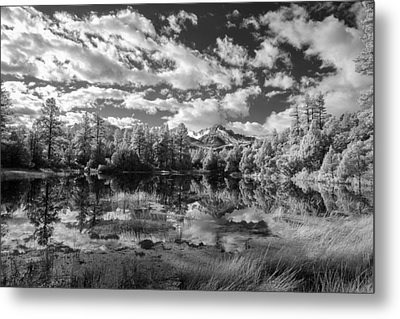 I Came To Look Metal Print by Jon Glaser