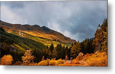 I Cant Forget This Light. Scotland Metal Print by Jenny Rainbow
