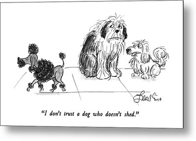 I Don't Trust A Dog Who Doesn't Shed Metal Print by Edward Frascino