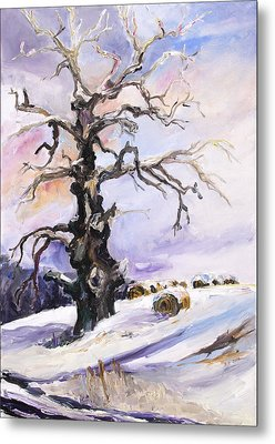 I Have Got Stories To Tell Old Oak Tree In Mecklenburg Germany Metal Print by Barbara Pommerenke