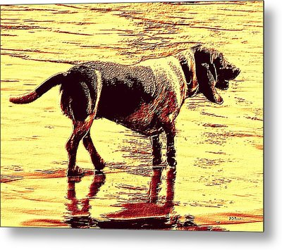 I Love Golden Oldies Metal Print by Brian D Meredith