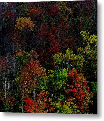 Metal Print featuring the photograph I Love October by Eric Switzer