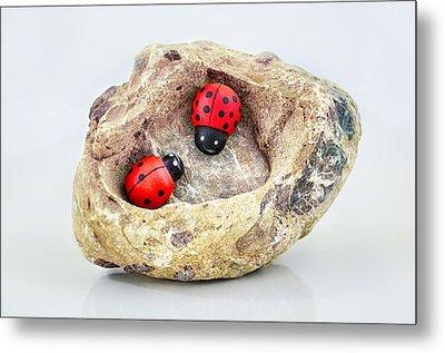 I Love You - Says Ladybugs Metal Print by Gynt