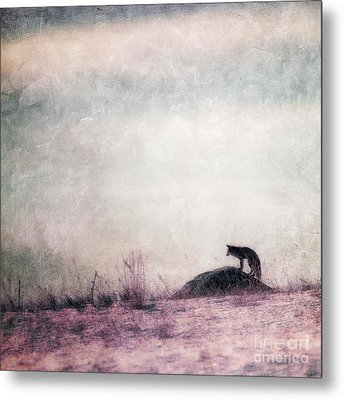 I Only Hear Silence Metal Print by Priska Wettstein