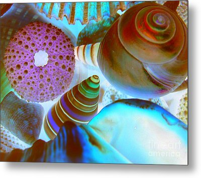 Metal Print featuring the photograph I Sell Seashells Down By The Seashore by Janice Westerberg