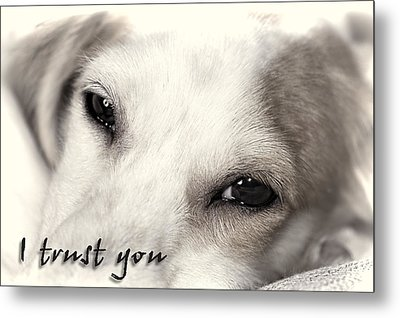 I Trust You Metal Print by Rock Weasel Designs