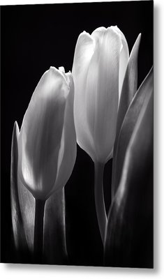 I Want To Lay My Head On Your Shoulder Metal Print