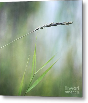 I Will Hold You Metal Print by Priska Wettstein