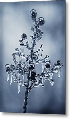 Ice Bouquet Metal Print