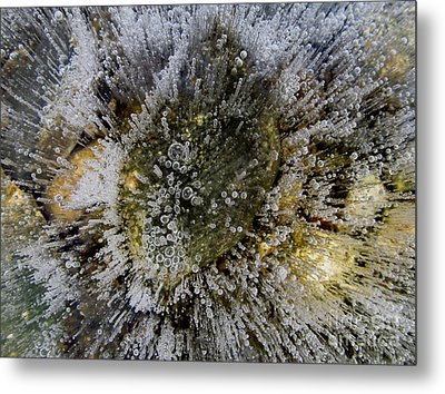 Ice Bubbles Metal Print by Fred  Sheridan