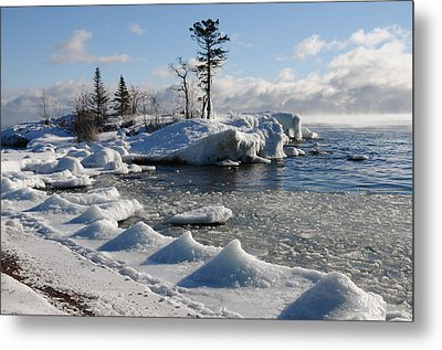 Metal Print featuring the photograph Ice Cold by Sandra Updyke