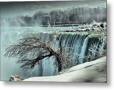Ice Covered Tree Metal Print