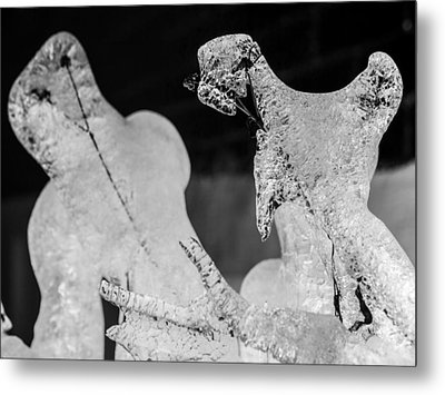 Ice Fight Metal Print by Carl Engman